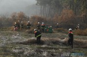 [크기변환]사진2_산림인접지 영농부산물 수거 및 파쇄.JPG