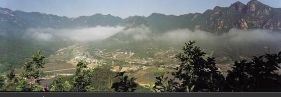 코로나19, 대전 #37 확진자 발생