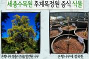 과학적 발견의 상징처럼 여겨지는 나무가 있다?
