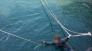 표류된 윈드서핑객 구조 및 익수자 인명구조