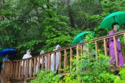 코로나19로 지친 의료진을 위한 숲의 선물