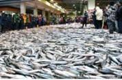 수산업・어촌 혁신발전 2030계획 추진