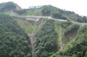 산림청, 올해 비무장지대 일원 산림훼손지 11ha 복원 추진